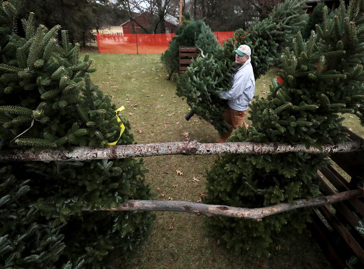 Jim Dohner, owner of Christmas Treeland in Baraboo, Wisconsin, carries a Fraser fir toward a display stand on Nov. 21.