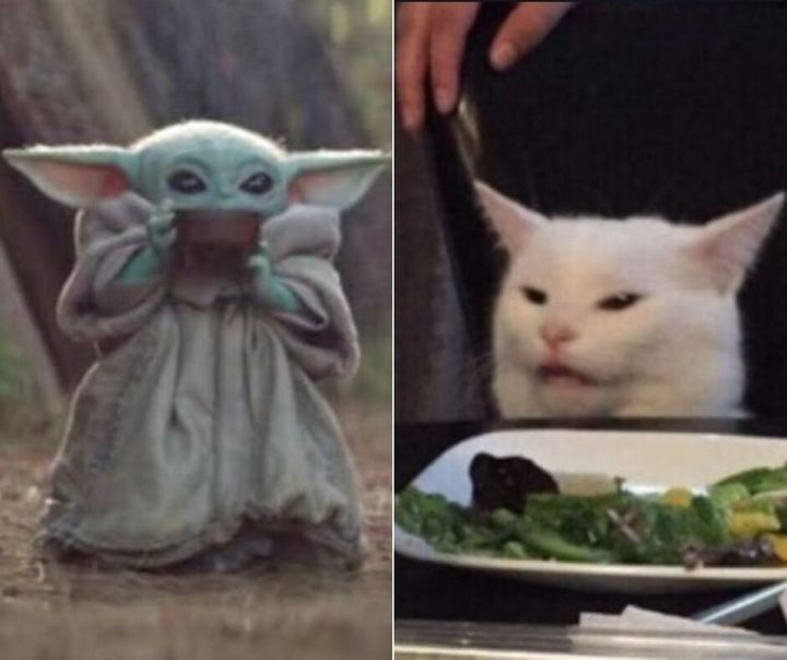 We can't all be Baby Yoda or Smudge the Cat.