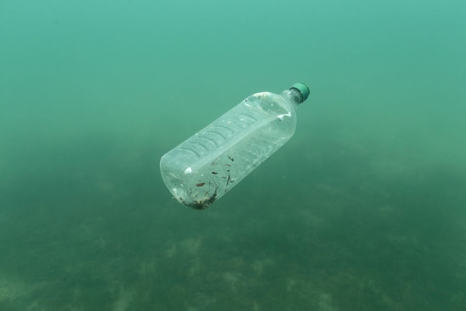 Plastic waste is polluting our land, oceans, and