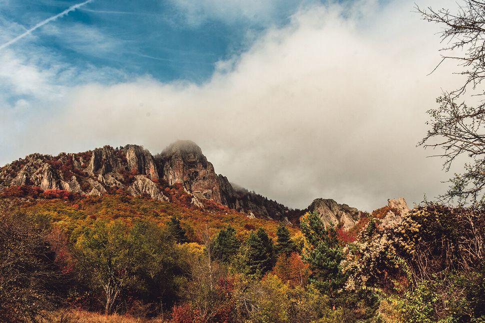 Οι βραχώδεις σχηματισμοί του παρθένου δάσους Φρακτού, Παρανέστι Δράμας.