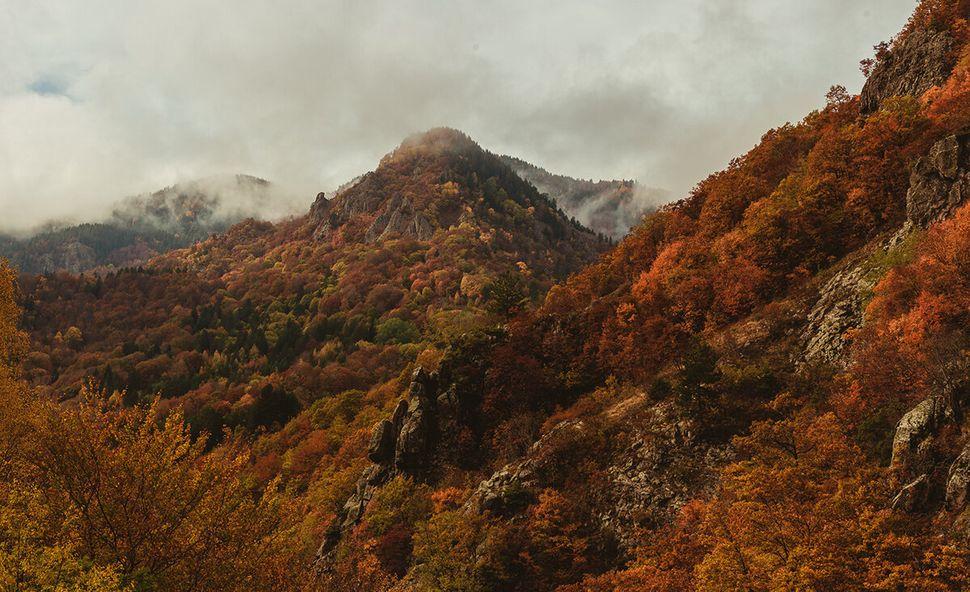 Τα μαγευτικά φθινοπωρινά χρώματα της Ροδόπης.