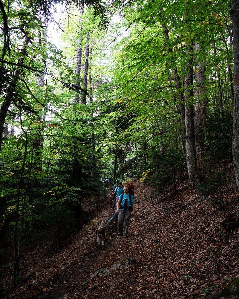 Περπατώντας στα μονοπάτια του μυθικού βουνού.