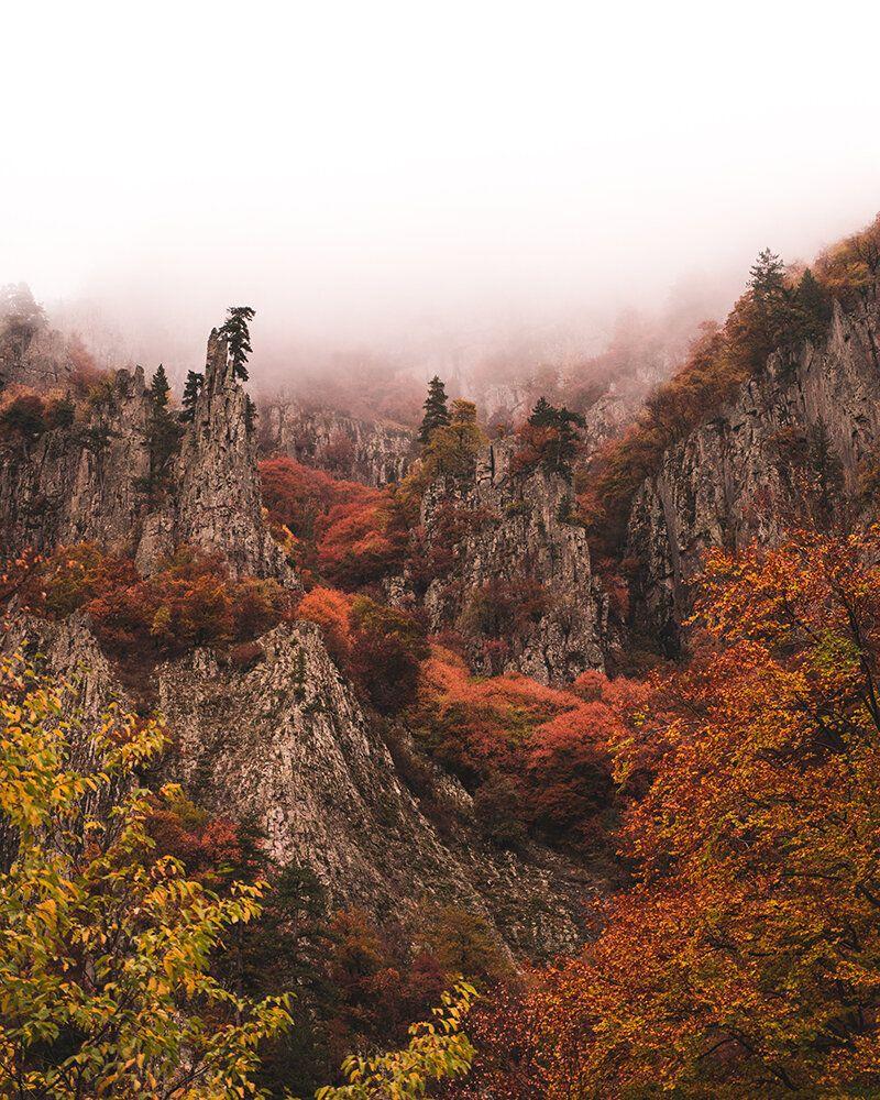 Παρθένο δάσος Φρακτού, χρώματα φθινοπώρου στους βραχώδεις σχηματισμούς.