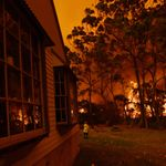 Bushfires Merge Into One Giant Mega Blaze As Sydney