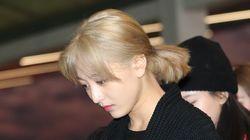 트와이스 지효가 팬들에 밀려 부상을 입자 JYP가 엄중