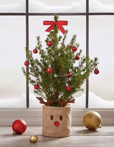 "<a href=""https://fave.co/36hd4rm"" target=""_blank"" rel=""noopener noreferrer"">Mini Christmas Tree, Marks &amp; Spencer</a>, &pound;27&nbsp;&nbsp;"