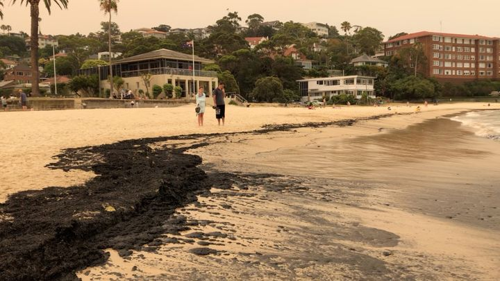 Ash from bushfires that affected New South Wales in the last days is seen on Balmoral Beach in Sydney, Australia, December 7, 2019, in this still image obtained from a social media video. IMOGEN BRENNAN/via REUTERS