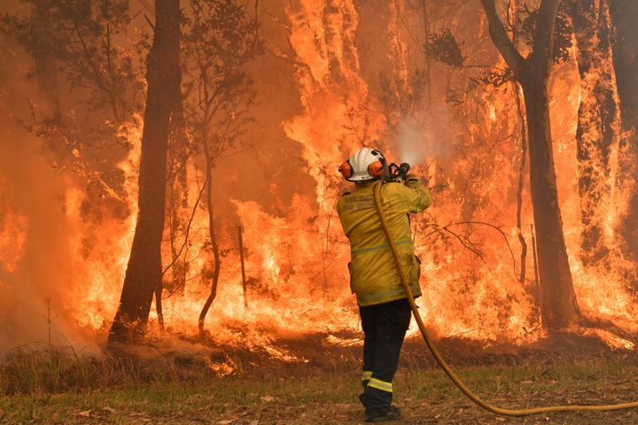 Bushfires have raged across New South Wales for over a month.