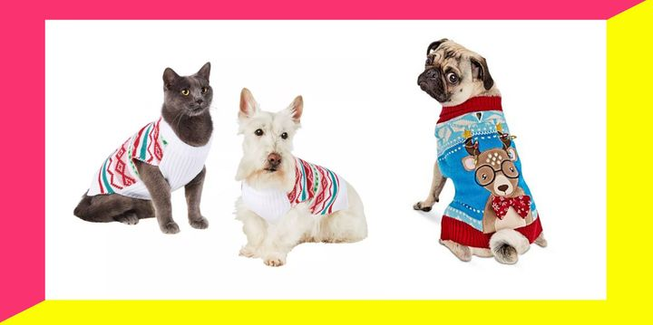 Your pet won't mind matching with you for the holidays.
