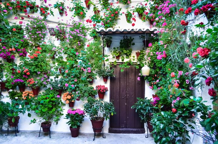 Los patios de Córdoba.