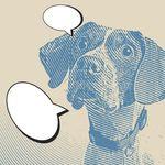 Todo lo que te está diciendo tu perro cada vez que mueve la
