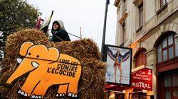 """La création du """"crime d'écocide"""" rejetée par l'Assemblée"""