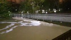 Inundaciones en Navarra por la importante crecida de los