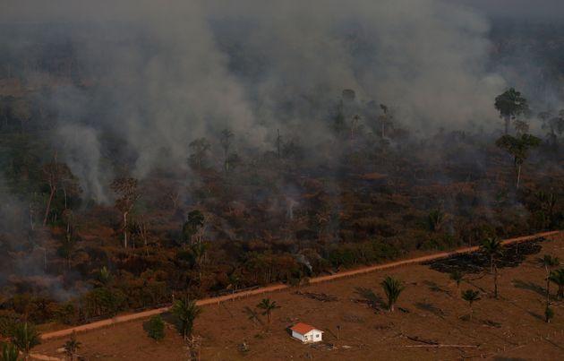 Desmatamento da Amazônia em novembro sobe mais de 100% na comparação anual, diz