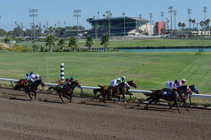 Thoroughbred horses make their way around the track at Los Alamitos Race Course in Cypress, California, in 2016. Two horses d