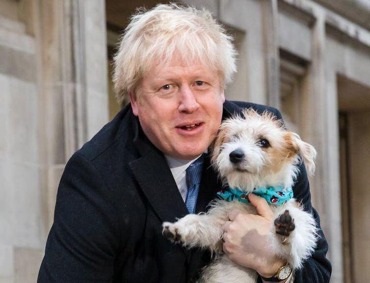 Dylan, le chien de Boris Johnson, est l'un des rares à savoir ce qu'il y a vraiment dans son cœur.