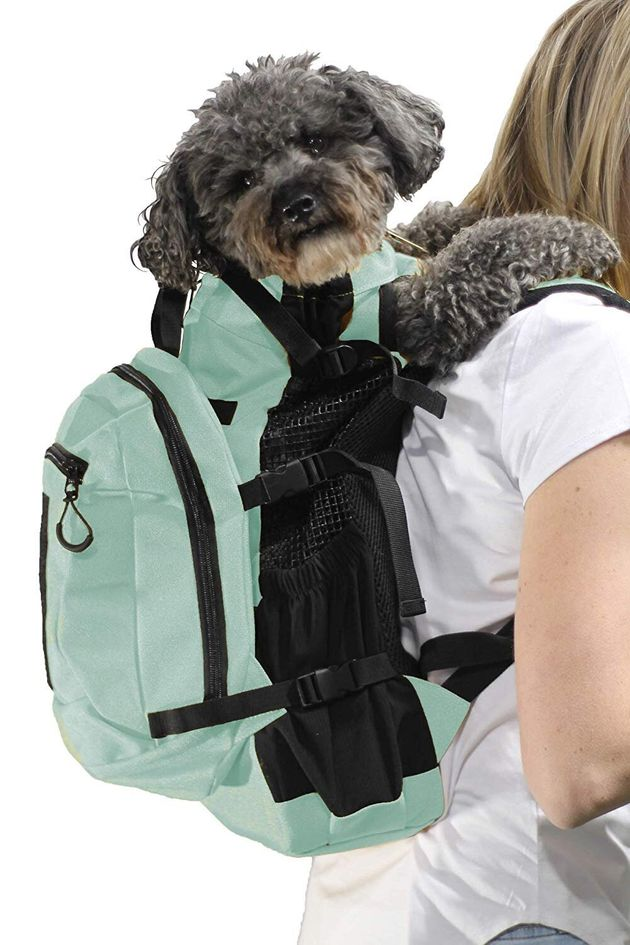 11 Gifts For Dog Lovers That Aren't Just
