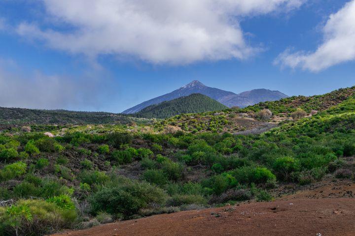 Santiago del Teide, en Tenerife.