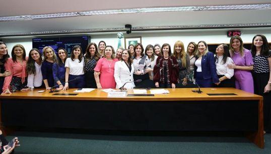 Entre ataques e união: O 1º ano da maior bancada feminina da Câmara dos