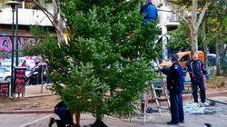 Χριστουγεννιάτικο δέντρο στην Πλατεία στα Εξάρχεια από τον Δήμο