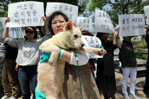 개인 동물활동가들이 5월 11일 서울 여의도 국회 앞에서 지자체의 구호동물 보호시설 마련과 구조동물 난민지위 부여, 개도살 금지, 불법적 개농장 시설 전수조사 및 철거 등을 촉구하고