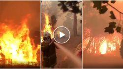 Gli incendi portano l'inferno in Australia. Le temperature sfiorano i 50 gradi