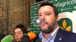 La rabbia di Salvini: