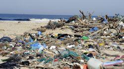 BLOG - La triple erreur du gouvernement qui tarde à interdire le plastique à usage