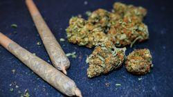 Dans quelles conditions la prise de cannabis peut-elle vous rendre pénalement