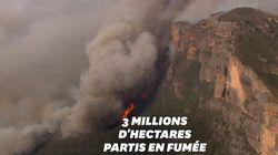Les incendies monstres en Australie vus du