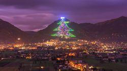 A maior árvore de Natal do mundo brilha no centro da