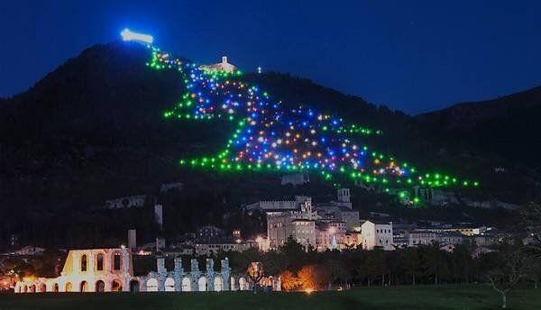 Maior árvore de Natal do mundo foi iluminada nesta