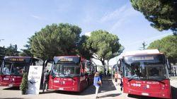 17 autisti drogati alla guida degli autobus a Roma dal 2018 a oggi. Atac li