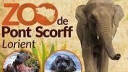 La collecte pour acheter un zoo breton et libérer les animaux a récolté 650.000