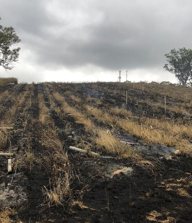 Burnt South Australia