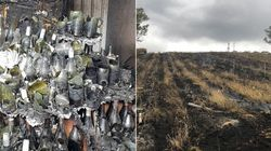 South Australian Winemakers Say Vineyards 'Completely Destroyed' By