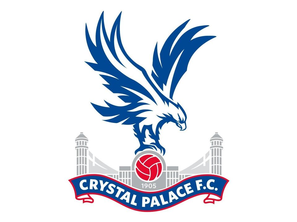 Crystal Palace's club doctor has said he and his family were racially abused by a young