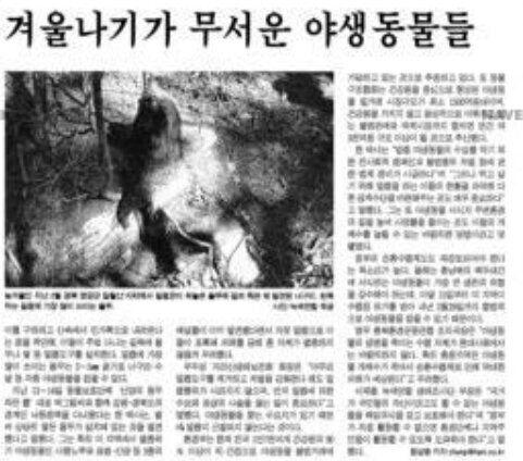 1990년대 기승을 무린 불법밀렵에 대한 한겨레 보도기사