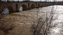 El Carrión en Celadilla (Palencia), en alarma en la cuenca del