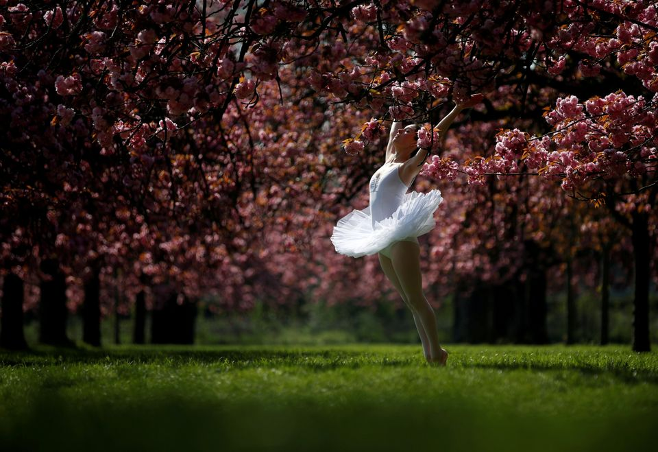Μια χορεύτρια ανάμεσα...