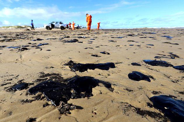 Voluntários limpam praia em Aracaju
