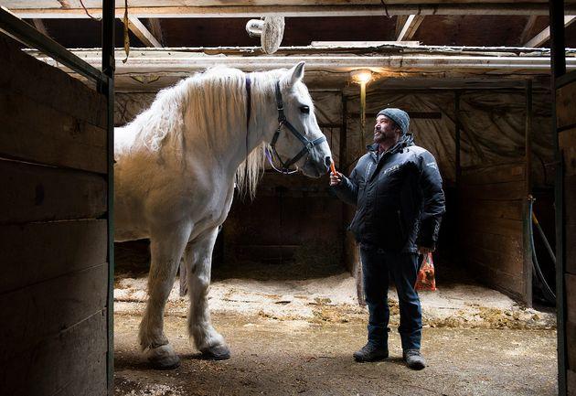 Luc Desparois, propriétaire de la plus grande étable de chevaux destinés aux calèches...