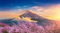 Japan Airlines mette in palio 50mila biglietti aerei gratis per un