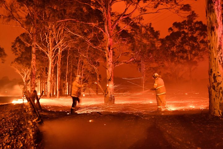 Firefighters hose down trees as they battle bushfires around the town of Nowra in the Australian state of New South Wales on Dec. 31, 2019.