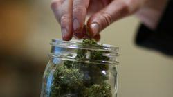 Il faudra maintenant avoir 21 ans pour acheter ou posséder du cannabis