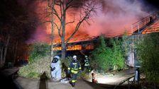 Polizei Vermute, Sky-Laternen In Brand, Zerstörten deutschen Zoos Menschenaffen-Haus