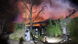 독일 동물원 화재로 오랑우탄, 고릴라 등 30여마리가