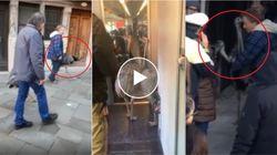 In vacanza con gli struzzi a Venezia. Turisti portano gli animali a spasso per la laguna