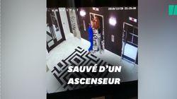 Ce médecin a sauvé ce chien d'un accident d'ascenseur