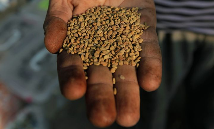 Toasted fenugreek seeds can be added to just about anything you eat.